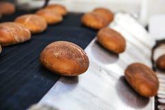 Bakade bröd på produktionslinjen på bagerit Royaltyfri Fotografi