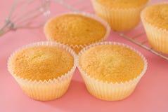 bakade cakes home Royaltyfri Foto