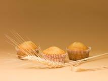 Bakade enkla muffiner Arkivfoton