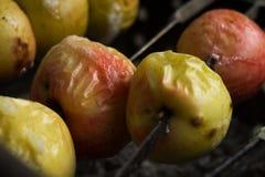 Bakade gula och röda äpplen på steknålar royaltyfria bilder