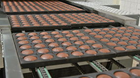 Bakade kakor på produktionslinje arkivfilmer