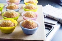 bakade muffiner nytt Royaltyfria Foton