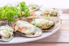 bakade musslor New Zealand Arkivfoto