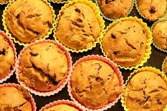 bakade nya muffiner Royaltyfria Foton