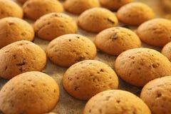 bakade nya muffiner Fotografering för Bildbyråer