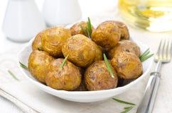 Bakade nya potatisar med kryddor Royaltyfria Bilder