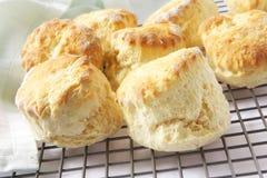bakade nya scones Royaltyfria Bilder