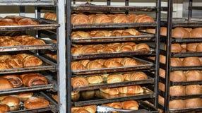 Bakade nytt bröd, hyllor med bullar ecuador quito arkivbild