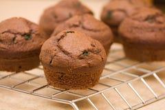 bakade nytt muffiner Arkivfoto