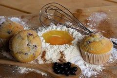 bakade nytt muffiner Royaltyfri Fotografi