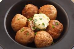 Bakade oreganon för koriander för rosmarin för timjan för bagett för ört för potatissammansättningsmör Royaltyfri Bild