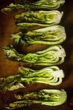 Bakade organiska behandla som ett barn Bok Choy Royaltyfria Foton