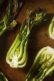 Bakade organiska behandla som ett barn Bok Choy Royaltyfria Bilder