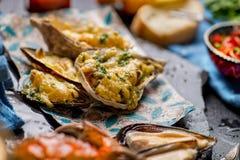 Bakade ostron med ost och annan skaldjur arkivbild