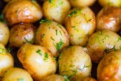 Bakade potatisomslagspotatisar som är hela i deras hudar med solrosolja och dill till guld- brunt Arkivbild