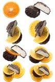bakar ihop orandeskivor Arkivfoto