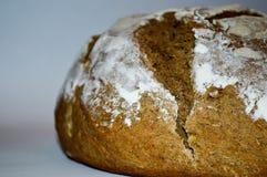 bakat bröd nytt Royaltyfria Bilder