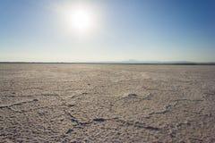Bakbelysta skorpor av havet som är salta på Larnaca Salt Lake i Cypern Arkivbild