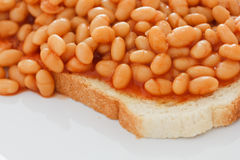 Bake beans on white toast Stock Image