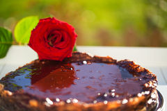 Bake brwon chocolate cake with a red rose Royalty Free Stock Images