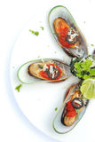 Bake mussels Stock Images