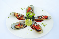 Bake mussels Royalty Free Stock Photography