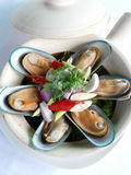 Bake new zealand mussels in classerole Royalty Free Stock Photo