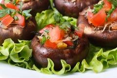 Baked充塞了在莴苣宏指令的portobello蘑菇 库存照片