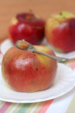 Baked apples Stock Photography