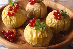 Baked apples with honey decorated with fresh red currants close Royalty Free Stock Photo