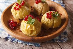 Baked apples with honey, mint and red currant close up horizonta Royalty Free Stock Photos