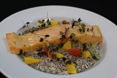 Baked atlantic salmon with creamy quinoa and citrus segments royalty free stock images