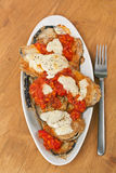 Baked Aubergine with Tomato Sauce Stock Photography
