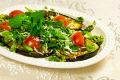 Baked aubergines and green mint Royalty Free Stock Images