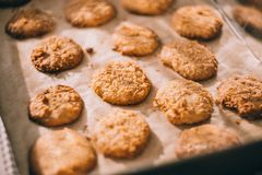 Baked, Baking, Close-up, Cookies, Royalty Free Stock Photo