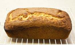 Baked banana bread on rack to coo Stock Photos