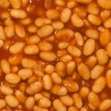 Baked Bean Stock Image
