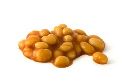 Baked beans isolated over white. Baked beans in tomatoe sauce isolated on a white background Stock Image