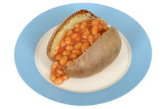 Baked Beans Jacket Potato on a plate Royalty Free Stock Photos