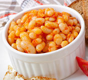 Baked beans in a mild tomato sauce Royalty Free Stock Images