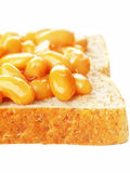 Baked beans sandwich. Close up of baked beans sandwich Stock Photos