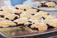 Baked Blueberry Bars Royalty Free Stock Photos