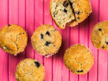 Baked Blueberry and Cranberry Muffins Royalty Free Stock Photos