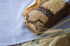Baked bread buns Royalty Free Stock Images