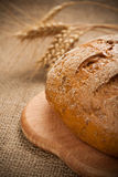 Baked bread on burlap Royalty Free Stock Photos