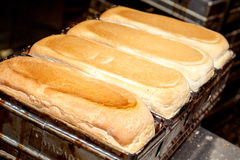 Baked Bread In Tins Stock Images