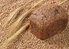 Baked bread, wheat grains and wheat ears on a fabric background stock image