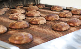 Baked Breads on the production line at the bakery Stock Photos