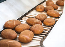 Baked Breads on the production line at the bakery Stock Image