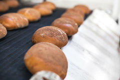 Baked Breads on the production line at the bakery Royalty Free Stock Images